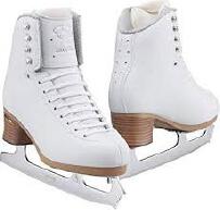 Coleccion de patines